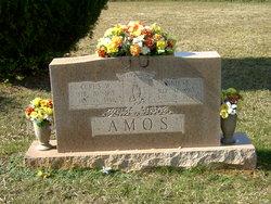Annie <i>Barbour</i> Amos