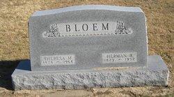 Herman B. Bloem