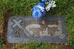 Domingo Angel
