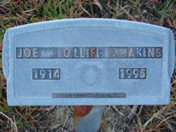 Joe Olliff Akins