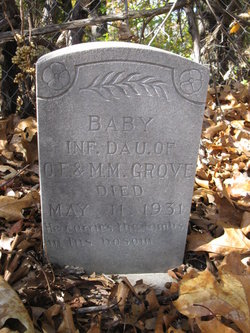 Baby Grove