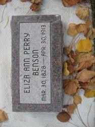 Eliza Ann <i>Perry</i> Benson