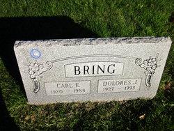Carl E. Bring