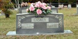 Louella Lula <i>Baker</i> Caskey