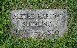 Alethe <i>Harlow</i> Suckling
