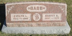 Evelyn L Babb