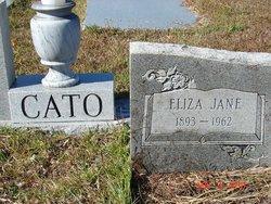 Eliza Jane Liza <i>Wetherington</i> Cato