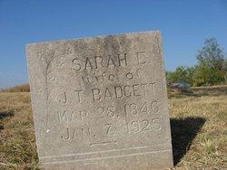 Sarah E. Badgett