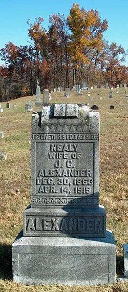 Nancy Cornelia Nealy <i>McDonald</i> Alexander