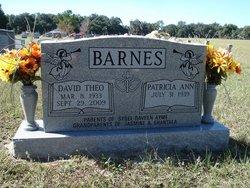 David Theo Barnes