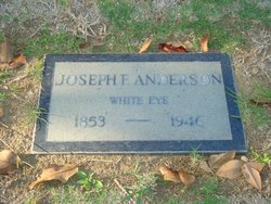 Joseph Foster Moore White Eye Anderson