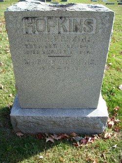 Mary E Hopkins