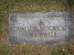 Halvor <i>Sedgwick</i> Broadwell
