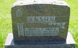 Laura J. Anson