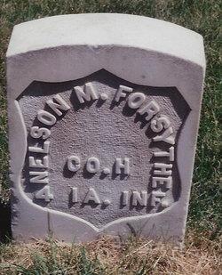 Nelson M. Forsythe