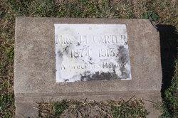 Mrs J L <i>Holtzclaw</i> Carter