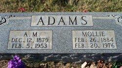 Adam Morrow Adams