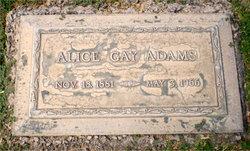 Alice Bell <i>Gay</i> Adams