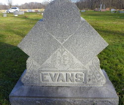 Steward M Evans