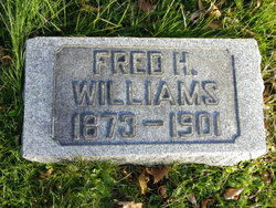 Fred H Williams