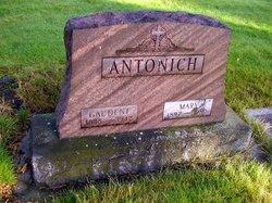 Gaudent Antonich