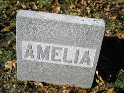 Amelia Evans