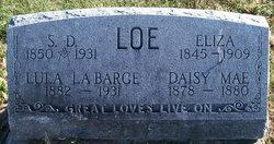 Daisy Mae Loe