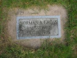 Norman A Gross