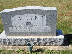 Roy DeWitt Allen