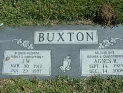 Agnes Rose <i>Witt</i> Buxton