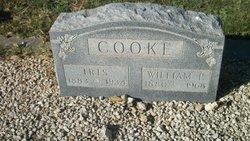 Iris <i>Tatum</i> Cooke