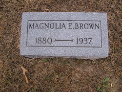 Magnolia <i>Eakle</i> Brown