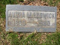 Audra Maria <i>Ludwick</i> Biddison