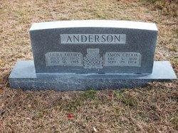Amon Crook Anderson