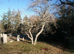 Sagamore Cemetery