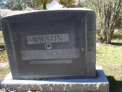 Riley Andrew Wilson