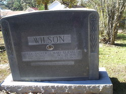 Mary Elizabeth <i>Winters</i> Wilson