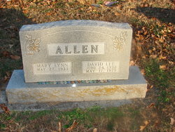 Dave Lee Allen