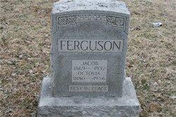 Jacob Ferguson