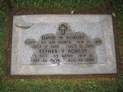 David H Boroff