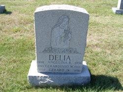 Angelina R Delia