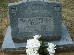 Verbena <i>Stevenson</i> Freeman