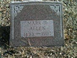 Mark R. Allen