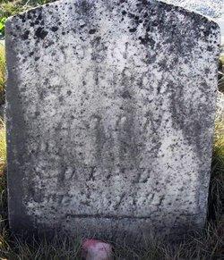 John Vandiver Mayfield
