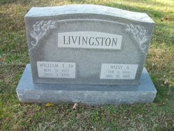 Daisy A Livingston