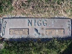 Theodore J Nigg