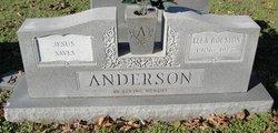 Ella <i>Houston</i> Anderson