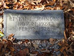 Bennie E Johnson