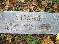Amy L Alexander