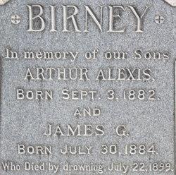 James G Birney